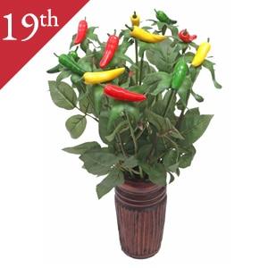 19th Anniversary: Chili Pepper